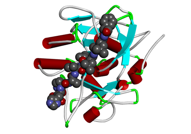 3D structure of Versazyme enzyme